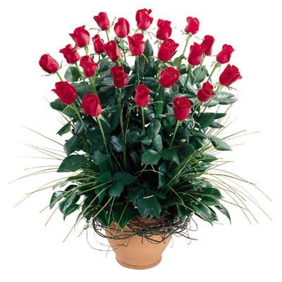 Gümüşhane çiçek yolla , çiçek gönder , çiçekçi   10 adet kirmizi gül cam yada mika vazo