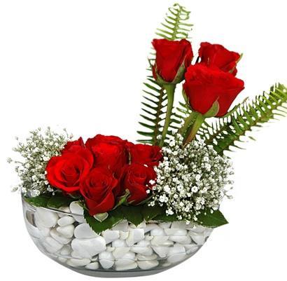 cam içerisinde 9 adet kirmizi gül  Gümüşhane kaliteli taze ve ucuz çiçekler