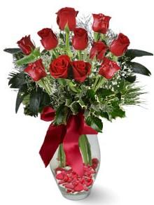 9 adet gül  Gümüşhane çiçek online çiçek siparişi  kirmizi gül
