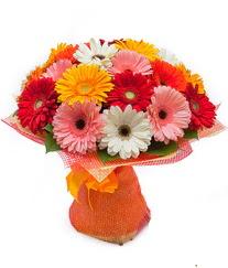 Renkli gerbera buketi  Gümüşhane çiçek gönderme sitemiz güvenlidir