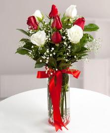 5 kırmızı 4 beyaz gül vazoda  Gümüşhane online çiçekçi , çiçek siparişi