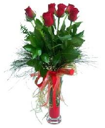 vazo içerisinde 5 kırmızı gül  Gümüşhane ucuz çiçek gönder