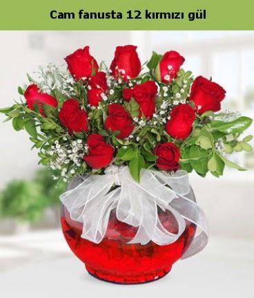 Cam içerisinde 12 adet kırmızı gül  Gümüşhane çiçek online çiçek siparişi