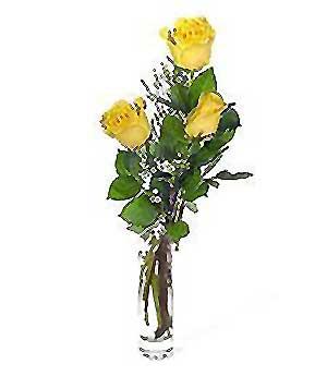 Gümüşhane çiçek mağazası , çiçekçi adresleri  3 adet kalite cam yada mika vazo gül