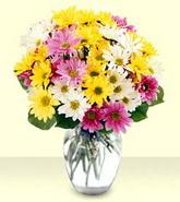 Gümüşhane çiçek mağazası , çiçekçi adresleri  mevsim çiçekleri mika yada cam vazo
