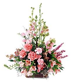 Gümüşhane uluslararası çiçek gönderme  mevsim çiçeklerinden özel