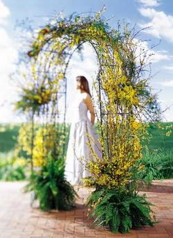 Gümüşhane çiçek online çiçek siparişi  güller ve mevsim çiçegi