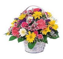 Gümüşhane cicekciler , cicek siparisi  mevsim çiçekleri sepeti özel