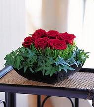 Gümüşhane hediye sevgilime hediye çiçek  10 adet kare mika yada cam vazoda gül tanzim