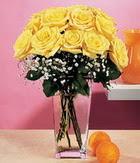Gümüşhane çiçek online çiçek siparişi  9 adet sari güllerden cam yada mika vazo