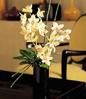 Gümüşhane çiçek servisi , çiçekçi adresleri  cam yada mika vazo içerisinde dal orkide