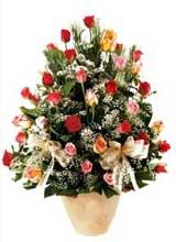 91 adet renkli gül aranjman   Gümüşhane çiçekçiler