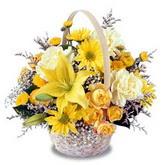 sadece sari çiçek sepeti   Gümüşhane çiçekçiler