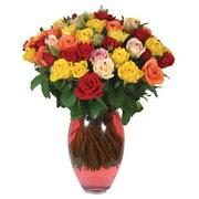 51 adet gül ve kaliteli vazo   Gümüşhane çiçekçiler