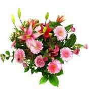 lilyum ve gerbera çiçekleri - çiçek seçimi -  Gümüşhane çiçek siparişi vermek