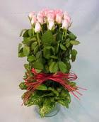 13 adet pembe gül silindirde   Gümüşhane internetten çiçek siparişi