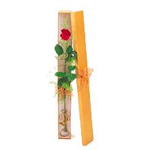 ince  kutuda  1  gül   Gümüşhane internetten çiçek siparişi
