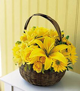 sepet içerisinde sarinin sihri  Gümüşhane online çiçekçi , çiçek siparişi