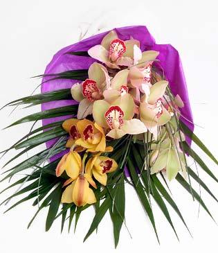 Gümüşhane online çiçekçi , çiçek siparişi  1 adet dal orkide buket halinde sunulmakta