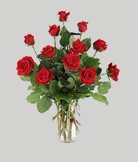 Gümüşhane online çiçekçi , çiçek siparişi  11 adet kirmizi gül vazo halinde