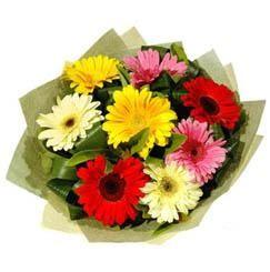 9 adet karisik gerbera demeti  Gümüşhane çiçek satışı