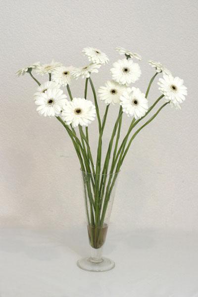 Gümüşhane çiçek satışı  cam vazo içerisinde 17 adet sade gerbera