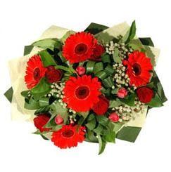 Gümüşhane uluslararası çiçek gönderme   5 adet kirmizi gül 5 adet gerbera demeti