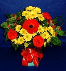 Gümüşhane uluslararası çiçek gönderme  sade hos orta boy karisik demet çiçek