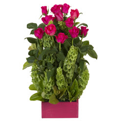 12 adet kirmizi gül aranjmani  Gümüşhane çiçek satışı