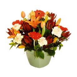 mevsim çiçeklerinden karma aranjman  Gümüşhane çiçek siparişi sitesi