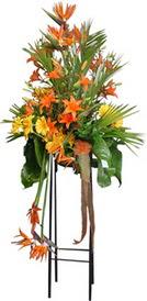 Gümüşhane hediye sevgilime hediye çiçek  perförje tanzimi dügün nikah ve açilislara