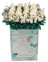 Gümüşhane anneler günü çiçek yolla  7 adet beyaz gül cam yada mika vazo tanzim