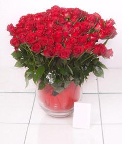 Gümüşhane yurtiçi ve yurtdışı çiçek siparişi  101 adet kirmizi gül