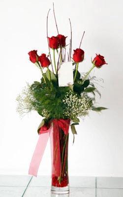 Gümüşhane online çiçekçi , çiçek siparişi  6 adet kirmizi gül ve cam yada mika vazo