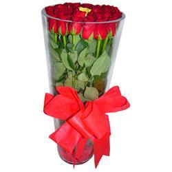 Gümüşhane çiçek gönderme  12 adet kirmizi gül cam yada mika vazo tanzim