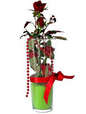 Gümüşhane güvenli kaliteli hızlı çiçek  Cam yada mika içerisinde 9 adet kirmizi gül - sevdiklerinize özel
