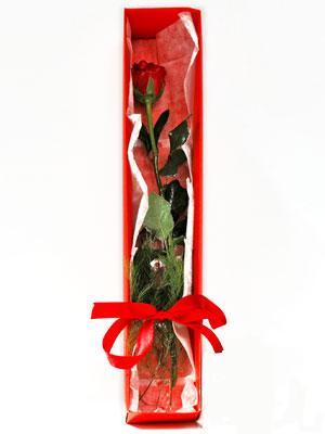 Gümüşhane hediye çiçek yolla  1 adet kutuda gül
