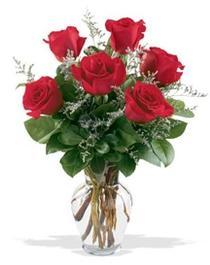 Gümüşhane çiçekçiler  7 adet kirmizi gül cam yada mika vazoda sevenlere