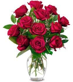 Gümüşhane güvenli kaliteli hızlı çiçek  1 düzine kirmizi gül sevenlere özel vazo gülleri
