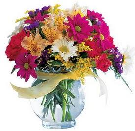 Gümüşhane çiçek online çiçek siparişi  cam yada mika içerisinde karisik mevsim çiçekleri
