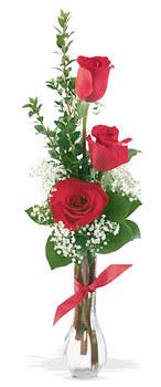 Gümüşhane online çiçekçi , çiçek siparişi  mika yada cam vazoda 3 adet kirmizi gül