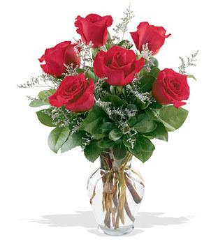 Gümüşhane online çiçekçi , çiçek siparişi  cam yada mika vazoda 6 adet kirmizi gül