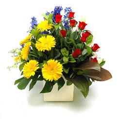 Gümüşhane güvenli kaliteli hızlı çiçek  9 adet gül ve kir çiçekleri cam yada mika vazoda