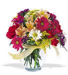 Gümüşhane cicekciler , cicek siparisi  cam yada mika vazo içerisinde karisik kir çiçekleri