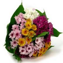 Gümüşhane online çiçek gönderme sipariş  Karisik kir çiçekleri demeti herkeze