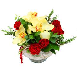 Gümüşhane çiçek siparişi vermek  1 adet orkide 5 adet gül cam yada mikada
