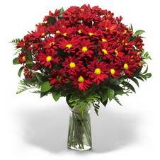 Gümüşhane internetten çiçek siparişi  Kir çiçekleri cam yada mika vazo içinde