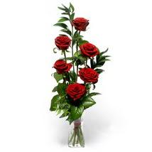 Gümüşhane hediye sevgilime hediye çiçek  cam yada mika vazo içerisinde 6 adet kirmizi gül