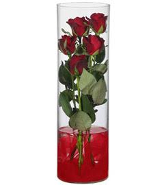 cam içerisinde 7 adet kirmizi gül  Gümüşhane çiçek servisi , çiçekçi adresleri