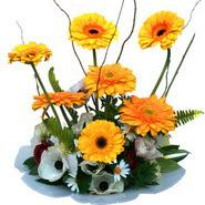 camda gerbera ve mis kokulu kir çiçekleri  Gümüşhane online çiçek gönderme sipariş